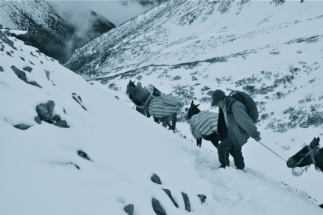 Nomè (the most patient of all of us) leads our mule team up the Sho'La Pass