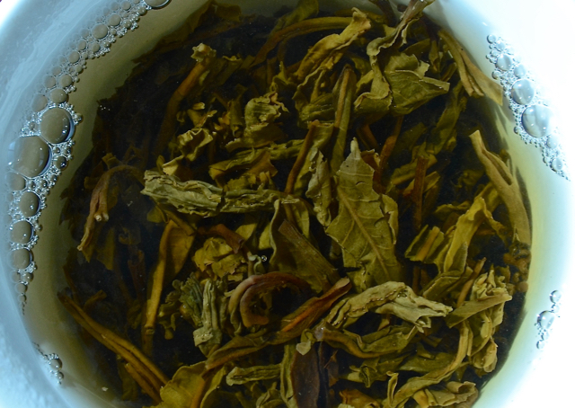 Tea leaves from an ancient tea tree open up with a first infusion within a flared cup (gai wan).