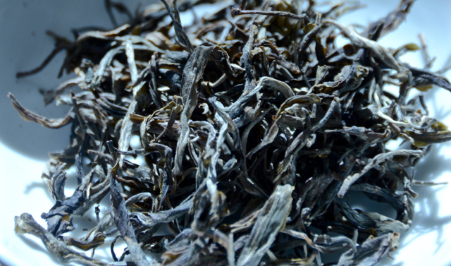 Though not as well known outside of Yunnan, Puerh big leaves often appears as simply loose, uncompressed tea. Here, an example of ancient tree's leaves.