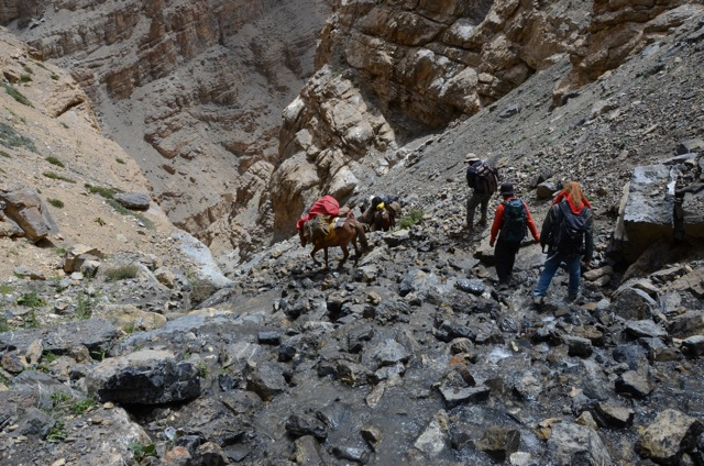 A descent that needed every second of attention as we plunged down...and further down. The mules, led by our man Sadanand were inspiring.